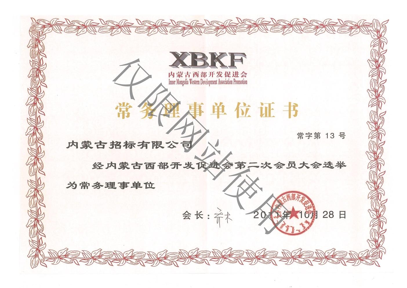 西bu开发促jin会理事